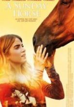 A Sunday Horse film izle