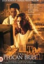 Pelikan Dosyası 1993 filmi izle